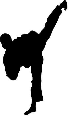 taekwondo-mathieu-chartier