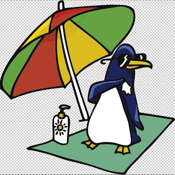 penguin-seo