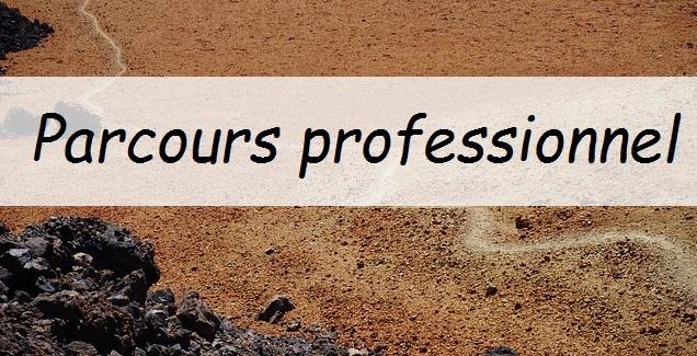 parcours-professionnel