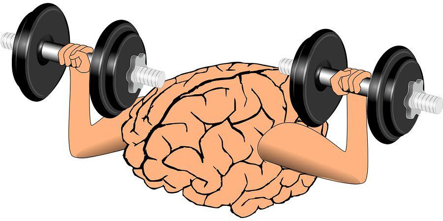 rank-brain-intelligence-artificielle