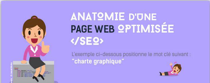 anatomie-page-web