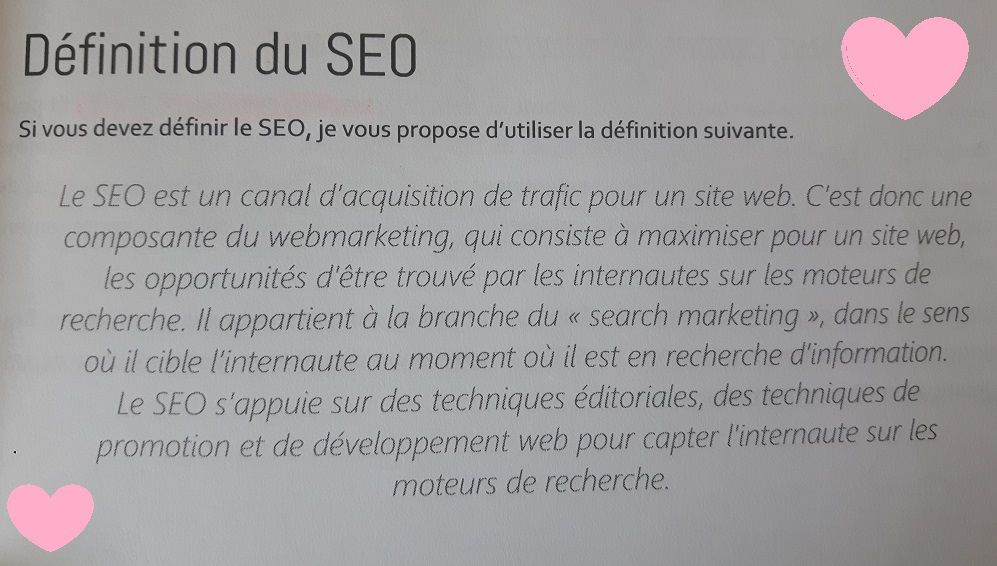 Search Optimization, livre #SEO de Lionel Miraton