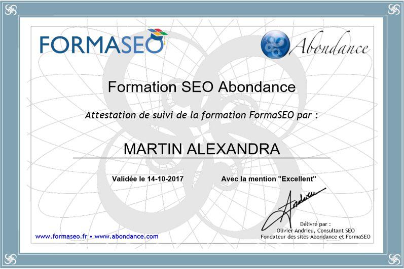 FORMASEO, une formation en ligne au référencement naturel !